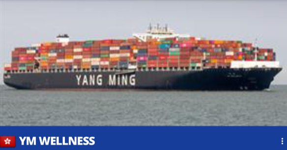 Colour photograph of the Yang Ming corporation's vessel Y. M Wellness at sea, loaded with up to 700 containers almost obscuring the bridge.